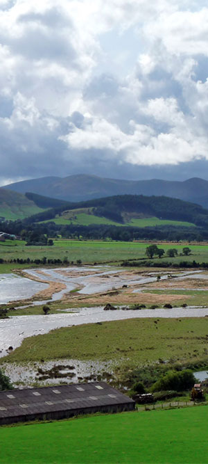 Combined surface water and groundwater flooding in the Tweed valley
